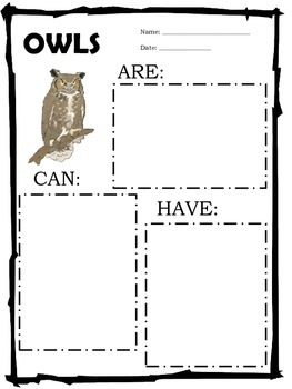 Owl Graphic Organizer: CAN-HAVE-ARE