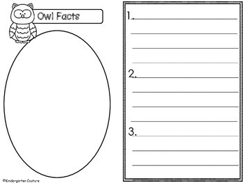 Owl Graphic Organizers - Can, Have, Are
