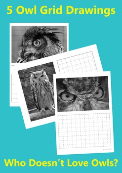 Owl Grid Drawings