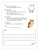 Owl Informational Report Writing Sheets, 12 Total Pages!!