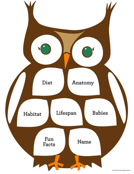 Owl Informational Unit: Owls Are A Hoot! (Distance Learning)