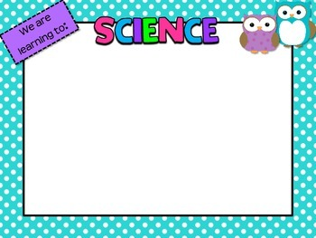 Owl Learning Goal/Objectives Posters