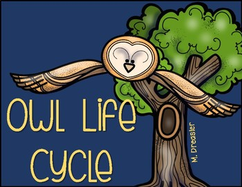 Owl Life Cycle