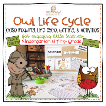 Owl Life Cycle Close Reading, Writing, Mini Lessons & Activities for K - 1