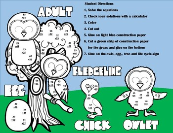 Owl Life Cycle Double Digit Addition NO Regrouping Math Craft