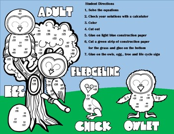 Owl Life Cycle Double Digit Addtion WITH Regrouping Math CRAFT