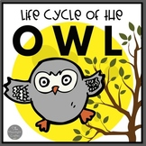 Owl Life Cycle Materials