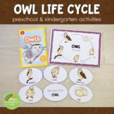 Owl Life Cycle Set - Preschool & Kindergarten