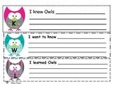 Owl Mini Unit