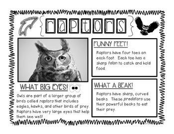 Owl Moon Literacy Bundle