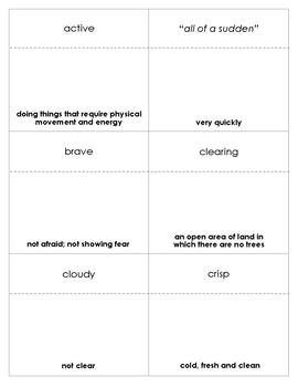 Owl Moon Vocabulary Bingo