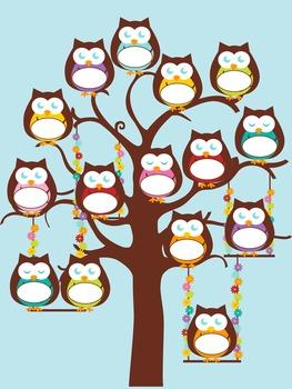 Owl Name Charts