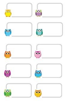 Owl Name tags Line and unlined