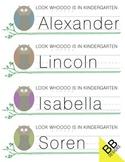 Owl Nametags Kindergarten