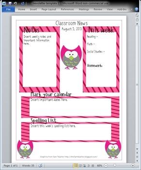 Owl Newsletter Template