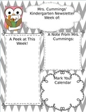 Owl Newsletter Template