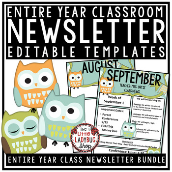 Owl Theme- Newsletter Templates Editable