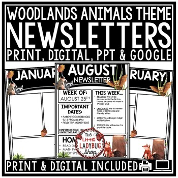 Owl Theme Classroom Monthly & Weekly Newsletter Template Editable