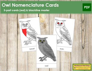 Owl Nomenclature Cards (Red)
