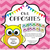 Owl Opposites Cards - An Antonym Activity