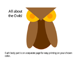 Owl Outline Project