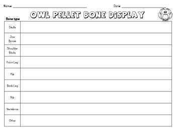 Owl Pellet Bone Display Sheet