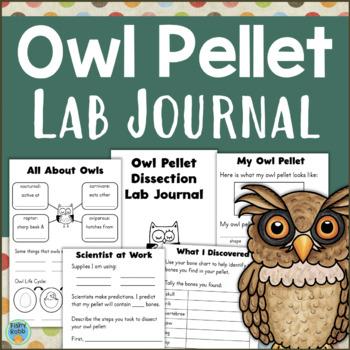 Owl Pellet Teaching Resources | Teachers Pay Teachers