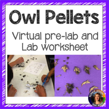 Owl Pellet Dissection Lab Report by Science Lessons That Rock | TpT