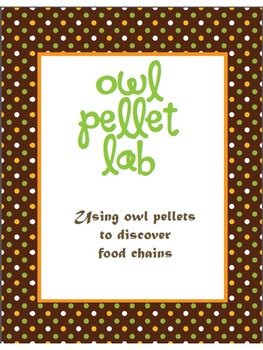 Owl Pellet Lab (Food Chain)