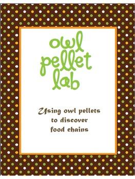 Owl Pellet Lab (Food Chain)
