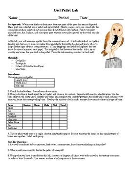 Owl Pellet Lab (for Ecology)