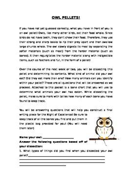 Owl Pellet Packet