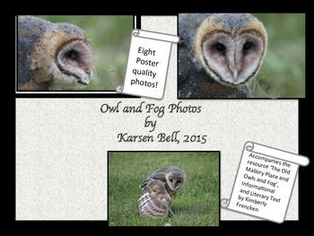 Owl Photographs: Poster Ready Prints to accompany The Old Mallory Place