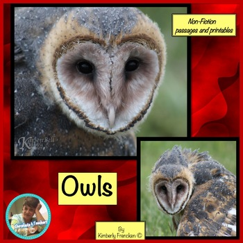 Owl: Non-Fiction Literacy Center or Close Reading Pocket Folders