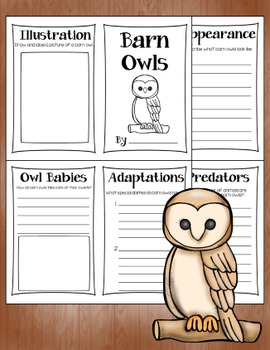 Owl Research Books