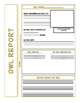 Owl Research Report Newspaper Format