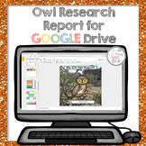 Digital Owl Research Report