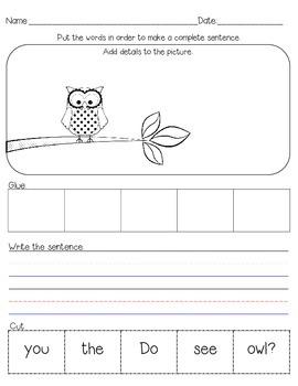 Owl Sentence