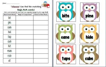 Owl Study!