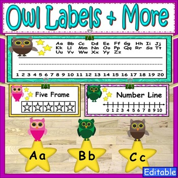 Owl Theme Labels and More Classroom Decor