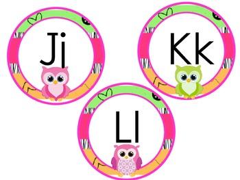 Owl Theme Alphabet Headers for Word Wall