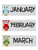 Owl Theme Birthday Month Labels