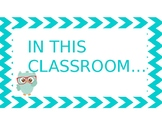 """Owl Theme """"In this classroom..."""" (editable)"""