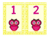 Owl Theme Number Cards 1-100 Yellow and Pink