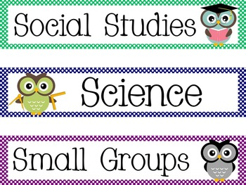 Owl Theme Polka Dot Daily Schedule Cards 2inX10in {editable}