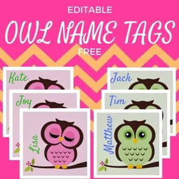 Owl Theme Student Name Tags EDITABLE
