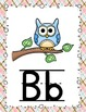 Owl Themed Alphabet Cards