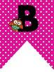 Bulletin Board Alphabet Pennants