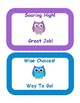 Polka Dot Owl Themed Behavior Clip Chart with a mini reminder sheet for parents