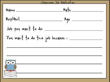 Owl Themed Classroom Job Application: